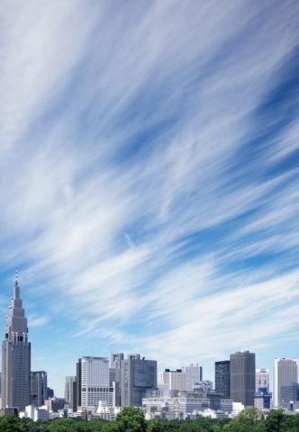 新宿御苑と高層ビル