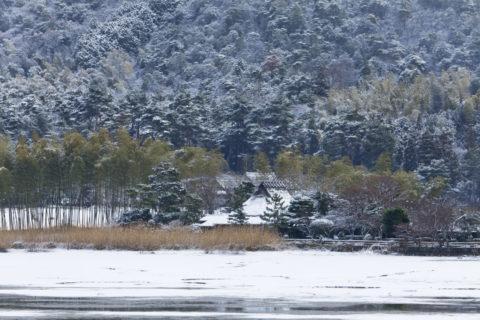 嵯峨野広沢池雪景色