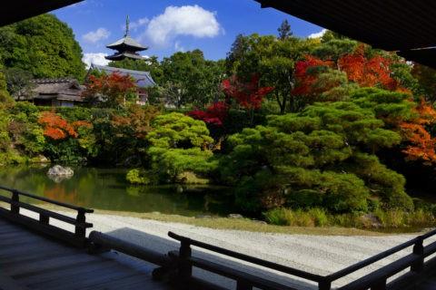 仁和寺 庭園