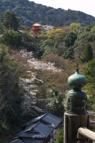 清水寺 子安の塔