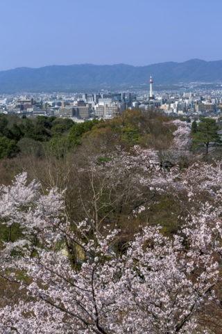 清水寺からの京都市内