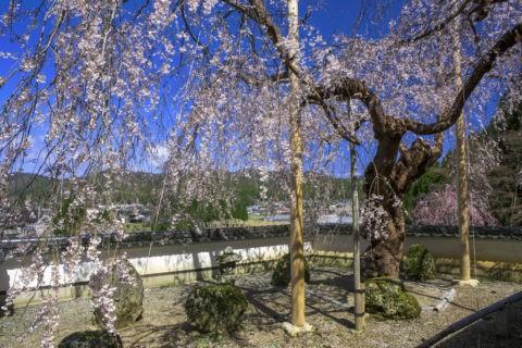 京北 福徳寺