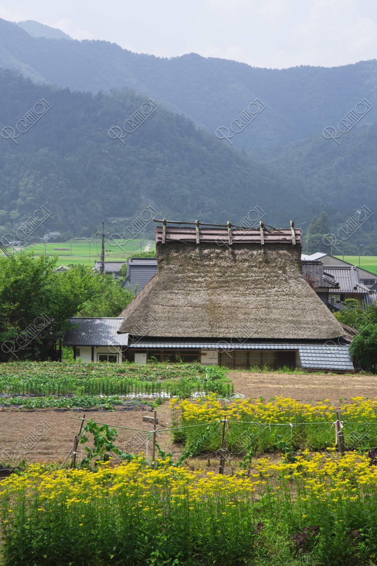 野々村仁清の生家