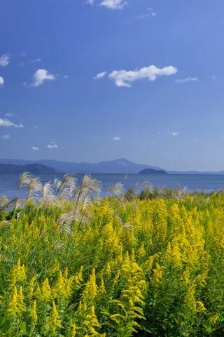 琵琶湖 竹生島