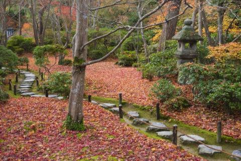 大河内山荘 紅葉