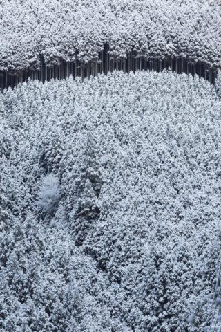 高雄雪景色