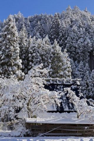 周山雪景色