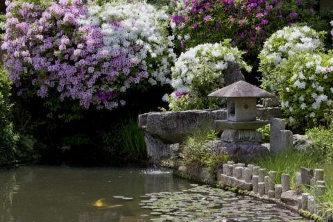妙満寺 灯籠