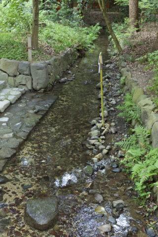 下鴨神社 奈良の小川