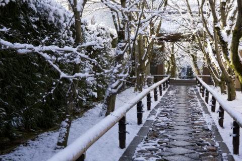 雪の光悦寺参道