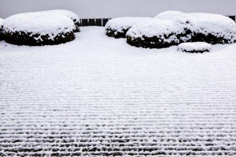 雪の正伝寺庭園