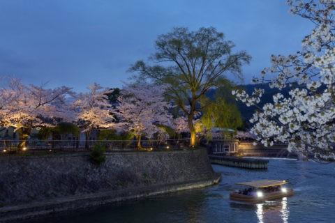岡崎宵桜回廊ライトアップ
