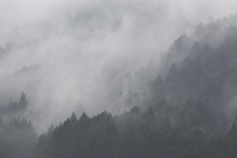山並みと靄