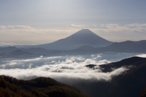 富士山 朝