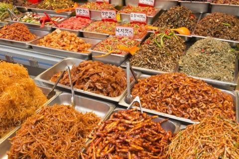 韓国料理 辛い料理