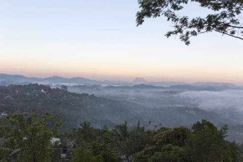 キャンディの町と朝霧