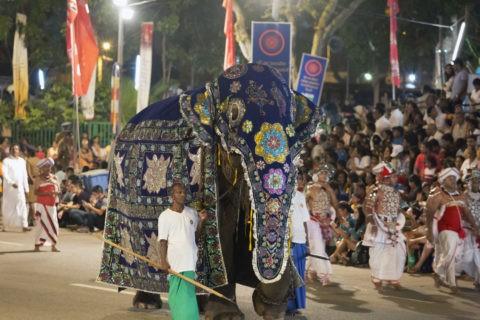 ペラヘラ祭
