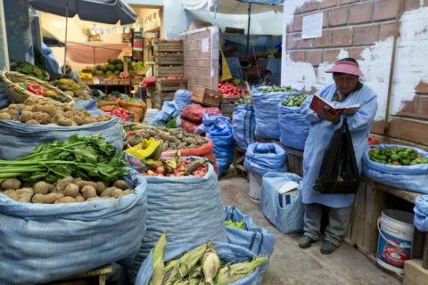 野菜売り市場