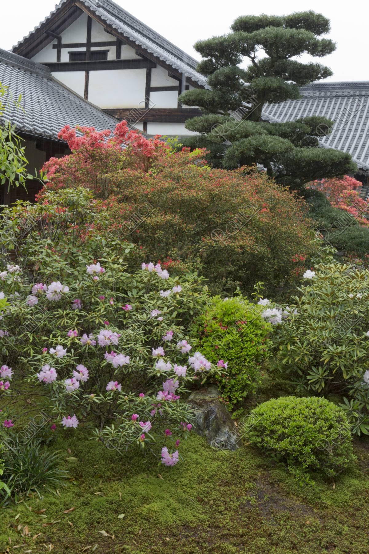 随心院 庭園
