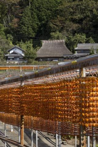 串柿と民家
