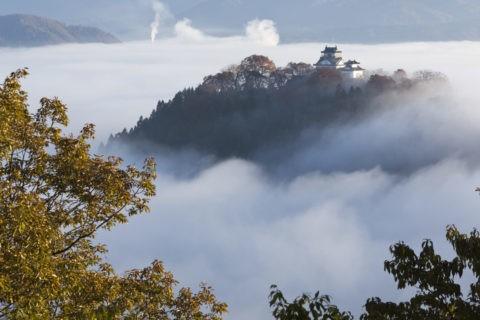 雲海の大野城