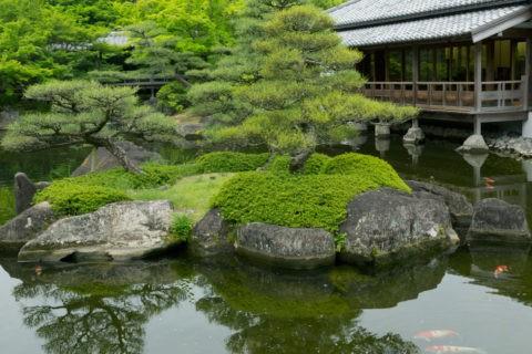 好古園 新緑の庭