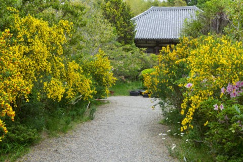 不退寺 庭園