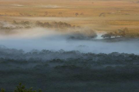 釧路湿原の朝