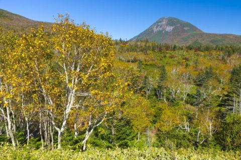 羅臼岳と紅葉