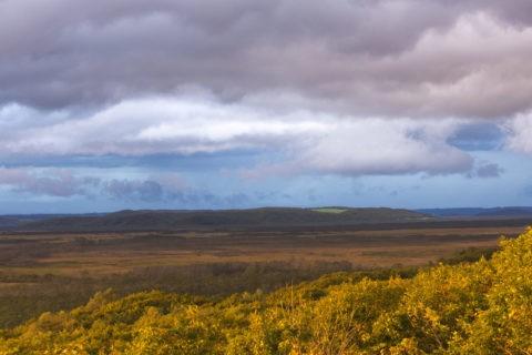 釧路湿原の紅葉