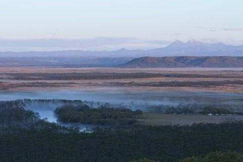 釧路湿原の朝靄