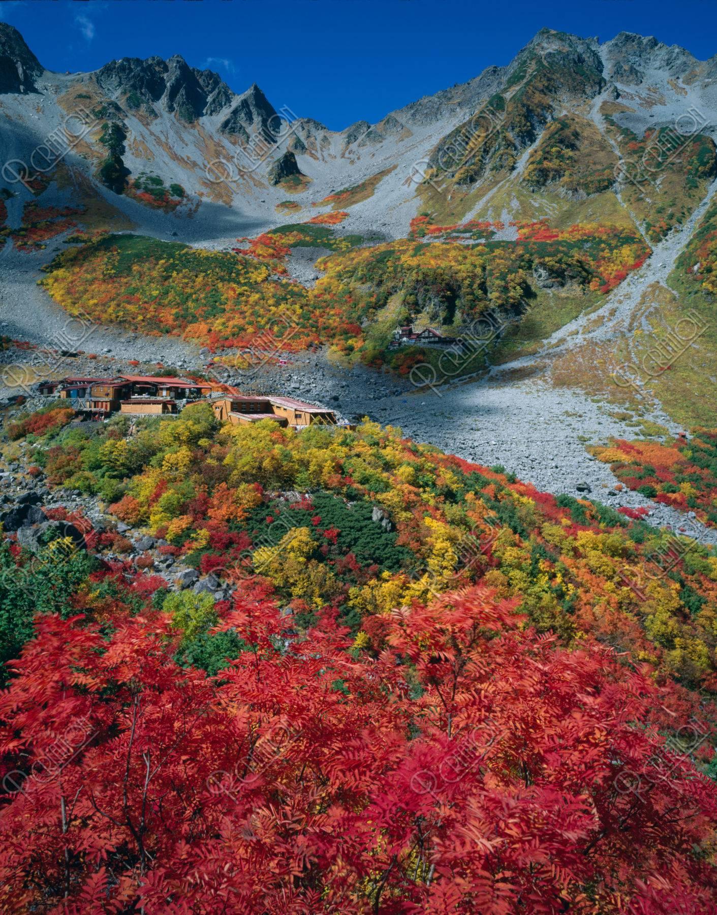 紅葉のナナカマドと山小屋