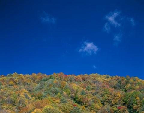 青空と紅葉の山 緑の回廊