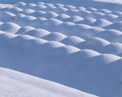 野菜畑の積雪