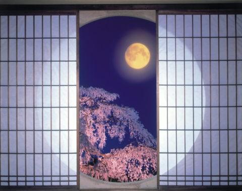 丸窓と夜桜 C.G.合成