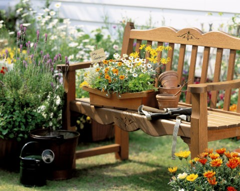 花壇とベンチ
