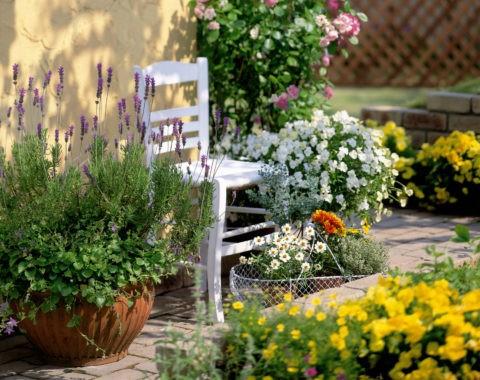 花と白い椅子