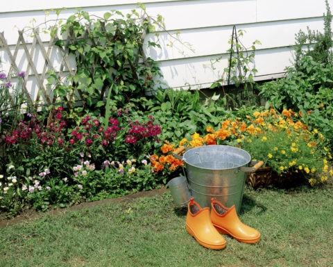花壇とバケツとブーツ