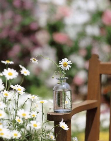 ガラスのビンと白い花