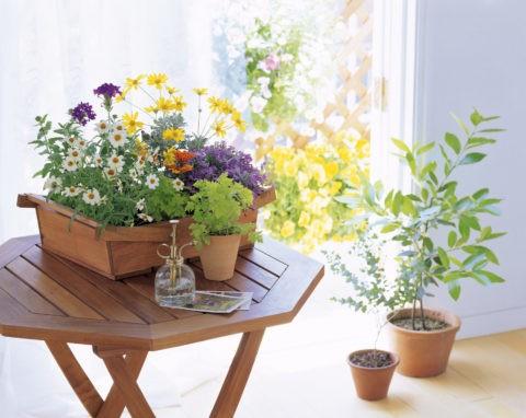 テーブルの上のいろいろな花