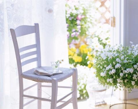 窓辺の白い椅子と花