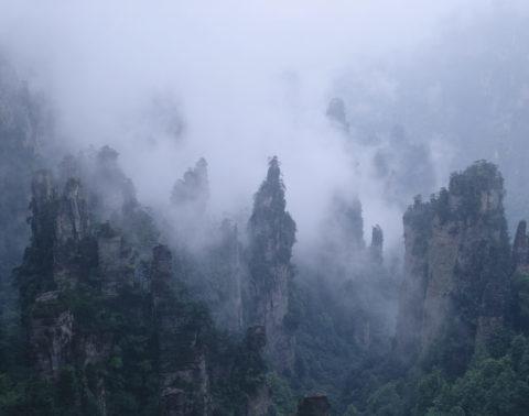天子山 W.H.