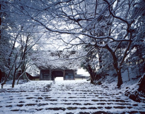雪の神護寺参道