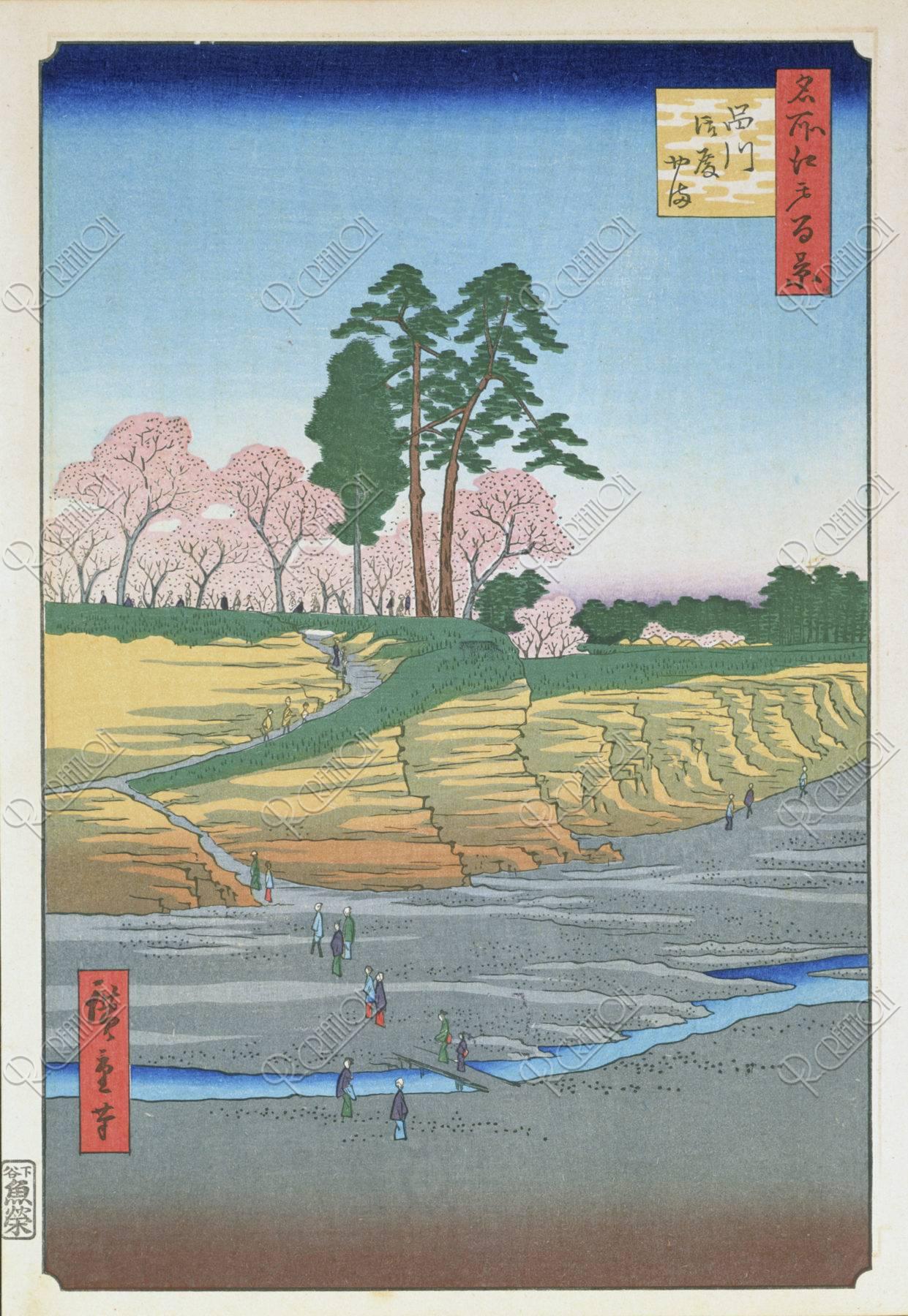 江戸百景 品川/御殿山/桜/春