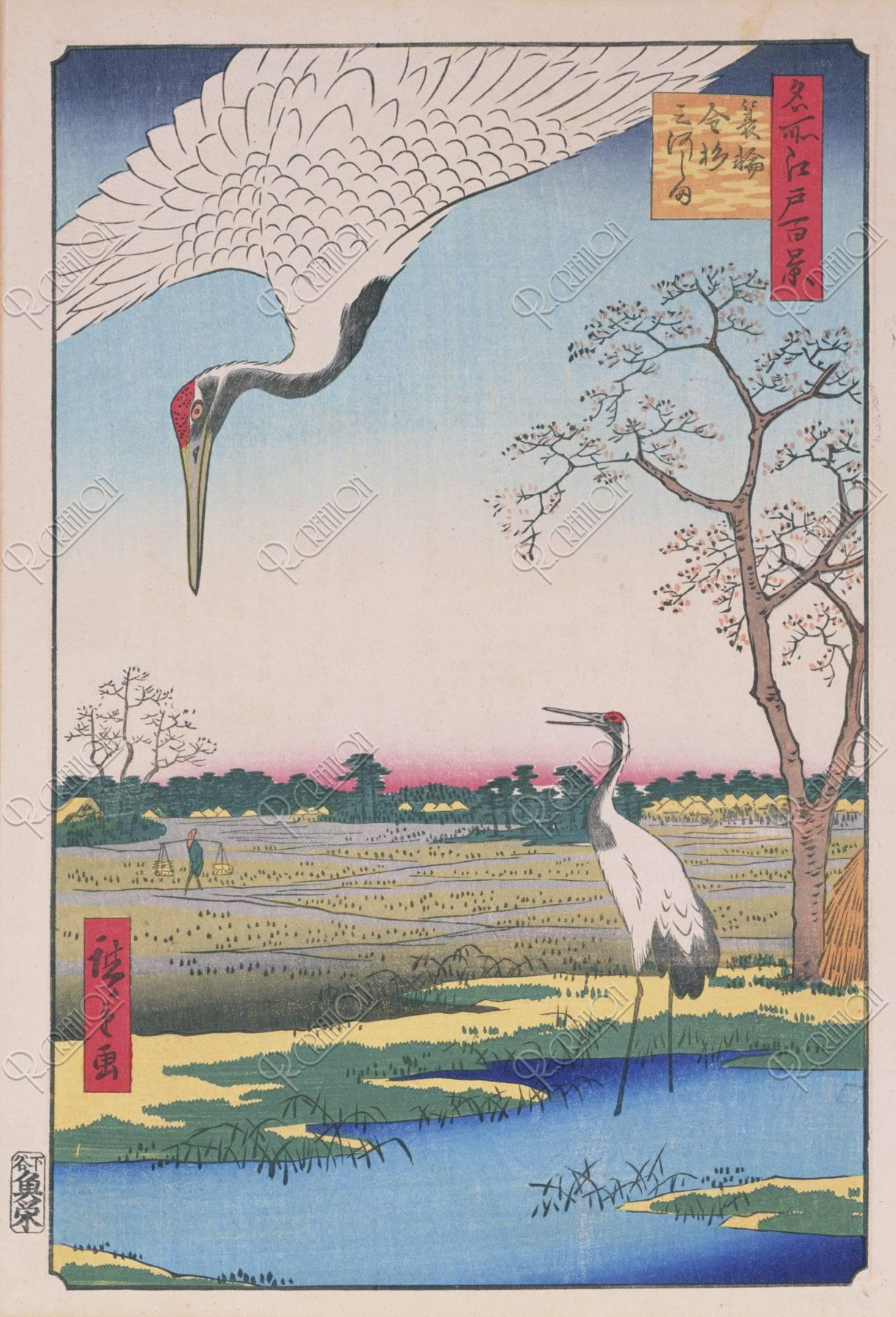 江戸百景 蓑輪金杉三河島