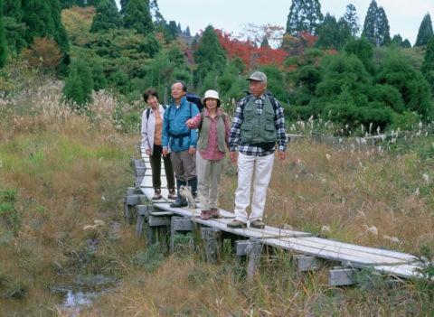 ハイキングをする中高年の4人
