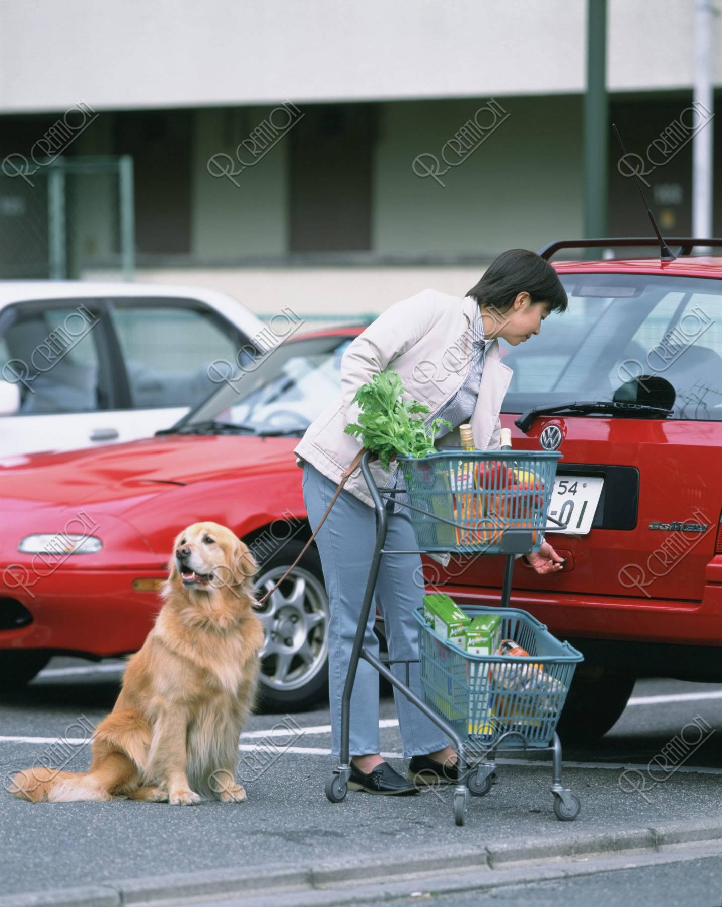 ショッピングカートと犬と女性