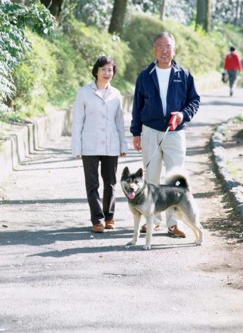 散歩をする夫婦 熟年