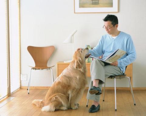 本を見る男性と犬