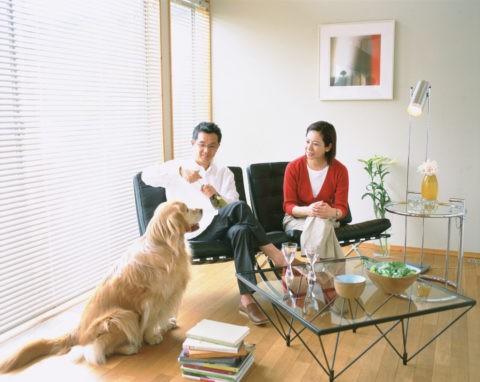リビングの夫婦と犬